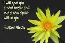 Spiritual / Faith