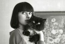 {J'adore les chatons} / cats!