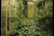 Greenhouse/drivhus