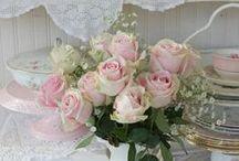 Roses - Rozen