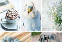 Blue ♥ / #blue#design