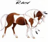 Horses Passion / Horse / Animal / Equine / Quadrupeds / Reference