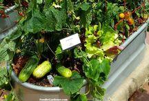 Garten / Gardening ideas
