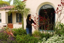 Xeriscape | Drought Tolerant Plants / USDA Plant Hardiness Zone 9b: 25 to 30 (F) / by Susan Knauff