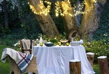 E N T E R T A I N. / Chic ways to entertain your guests. Table styling and recipes