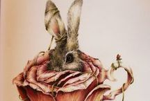 For The Love of Bunnies / Rabbits / by Annette Nowicki