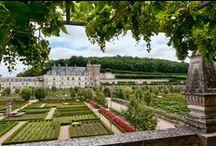 Flowers And Gardening / Giardini, orti, parchi e fiori