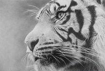 Σχέδια ζωγραφικής / Beautiful art