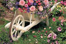 giardino/orto...