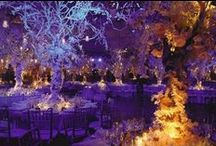 Reception: Dinner / | Anything related to the decorations and food on the table--place settings, menu designs, food. |