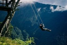 Swings For Grownups / The ultimate relax ...swinging and thinking with your favourite cuppa.
