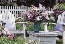 Gardening, summer gottage