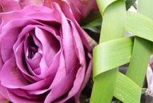 Blumen, Pflanzen + Gestaltung