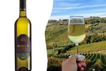 Vino Verdicchio: le etichette / Le etichette del Verdicchio, il vino bianco più premiato d'italia
