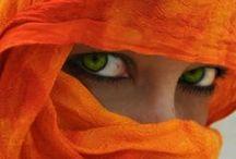 Orange it is !! / Everything
