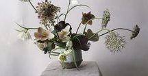 Flowers/Plants/Garden