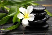 Zen Attitude...