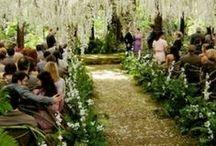 DIY Weddings & Events