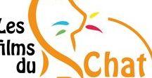 Les info sur le Chat Roux. / Site, blog, réseaux sociaux... Toutes les informations sur Les films du Chat Roux sont ici. #lesfilmsduchatroux