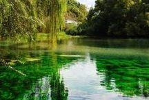 Vivere la natura nel Lazio / Natura incontaminata, colline verdi, macchie scure di boschi e foreste, maestose cime innevate, fiumi limpidi, laghi argentei e mare, il Lazio è anche questo, attraente per natura.