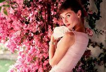 Audrey ❤