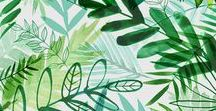 Succulents & Greenery / Forest, Greenery, Jungle, Tropical, Plant illustrations by © magrikie
