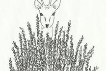 illustraties van mij ✏