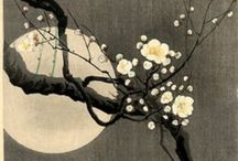Japanese Art / Beautiful japanese painting #ink #japan
