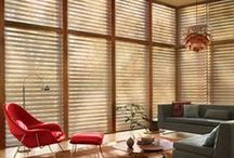 Window Coverings / These window shadings transform sunlight into remarkable beauty!
