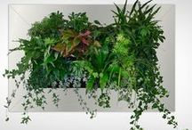 Green Walls / Living walls / Green wall painting, Green walls , made in Holland,   living green one the wall,  Suite Plants USA, Cornwall New York www.suiteplants.com  #livingwall#  greenwall# verticalgarden #greendesign #style #ecodesign #inhabitat