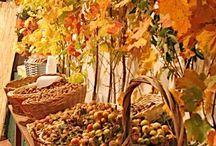 Herbstgewitter