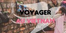 Voyager au Vietnam / Du sud au nord du Vietnam, ne manquez rien des paysages incroyables du Vietnam.