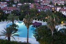 Sunrise Pools