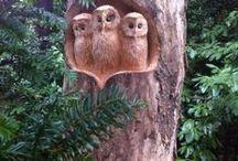 carvings in trees / řezby do kmenů