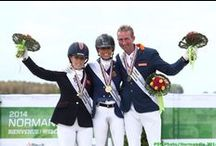 Para-Dressage / Para-Dressage : 25 - 29 August 2014 at the Prairie Racecourse in Caen / by Alltech FEI World Equestrian Games™ 2014 in Normandy.