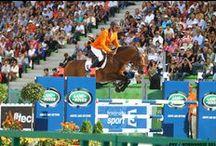 Jumping  / Jumping : 1 - 7 September 2014 at D'Ornano Stadium in Caen / by Alltech FEI World Equestrian Games™ 2014 in Normandy.