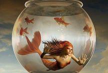 Créatures de la MER et de la TERRE / Mermaids, Seahorses, Fish, Butterflies / by Aggie Arbez