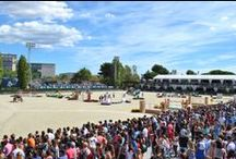 Finale Coupe des Nations CSIO Barcelona 26/09/2013 / ROAD TOUR Finale Coupe des Nations CSIO Barcelona  / by Alltech FEI World Equestrian Games™ 2014 in Normandy.