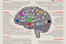 Psychology and Brain Science / by Melissa Rose