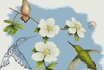 păsări  - birds