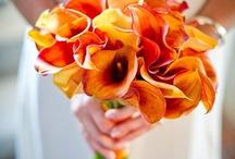 Yellow Orange Brown Bouquet