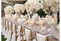 The Wedding Planner / Need some help planning your wedding and getting creative ideas? Check these out!