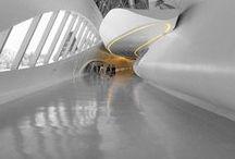 Architecture Maestro - Zaha hadid