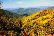 The Scenery / The North Georgia Mountains are gorgeous, any time of year. The views are breathtaking & shouldn't be missed while visiting Helen, Ga.