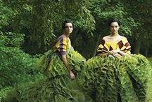 Green / by Martha Foss