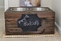 DIY Pet Projects / Awesome & cool (or awesomely cool) DIY pet projects for you to work on at home!