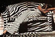 BEIJA : MONOCHROME / Zebra. www.beijaflorlingerie.com