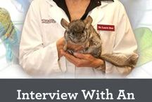 Exotic Animal Careers / Exotic Animal Careers: Career Inspiration for working with exotic animals.