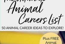 Wildlife Careers / Wildlife Jobs and Careers for the Animal Lover | Veterinarian | Wildlife Conservation | Wildlife Rehabilitation | Wildlife Biologist and more! Need help deciding which career is right for you? Take my FREE Animal Careers Quiz >>> http://bit.ly/animalcareerquiz