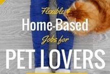 Animal Business Ideas / Business Ideas for animal lovers | Pet business and animal business inspiration | Work from home with your pet.
